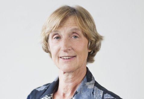 Prof. Dr. Marjolein 't Hart